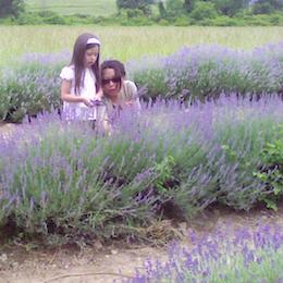 Lavenderpickers